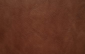 Leather sample
